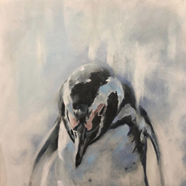 JulieBrunn-Penguin