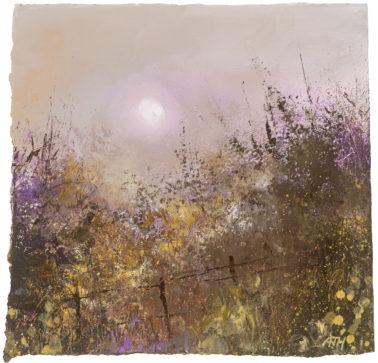 amanda-hoskin-AutumnEveningNearStMawes