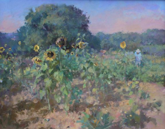 Jacqueline-Williams-Sunflowers