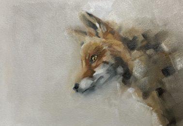 JulieBrunn-RedFox