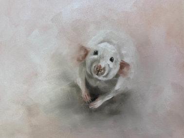 JulieBrunn-Cheese