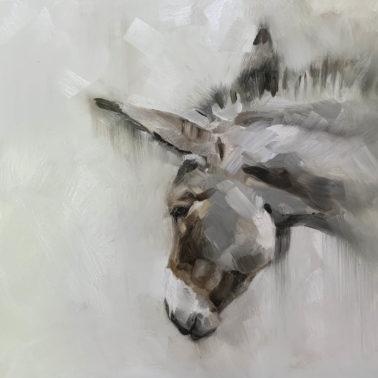 JulieBrunn-LittleDonkey